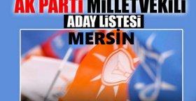 AK Parti Mersin Milletvekili Aday Listesini Nasıl Buluyorsunuz ?