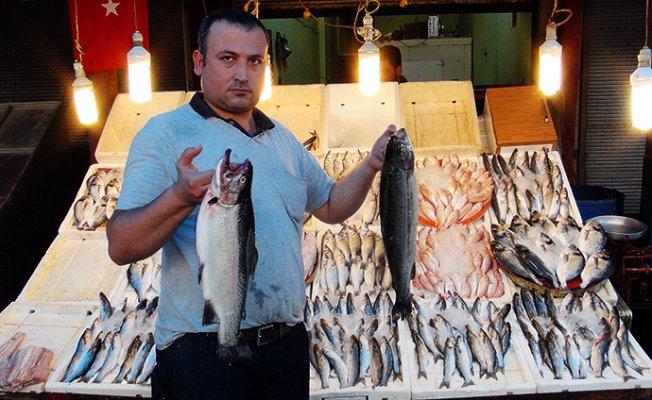 Havalar Soğudu Balık Fiyatları 2 Kat Arttı