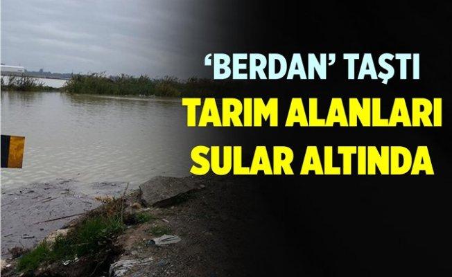 Berdan Nehri Taştı, Ekili Araziler Sular Altında Kaldı...
