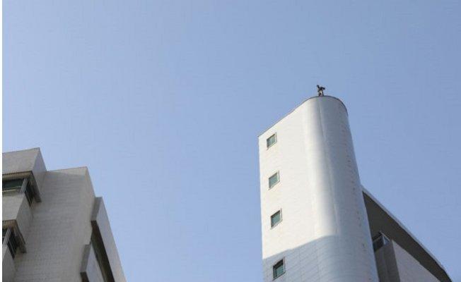 Mersin'de Adliye Binasında İntihar Girişimi