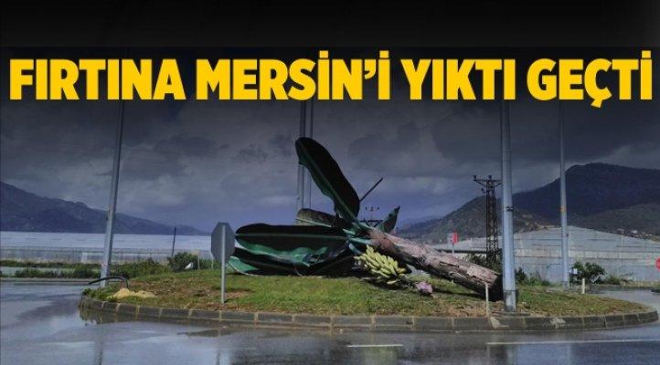 Fırtına, Çilek ve Muz Seralarını Vurdu