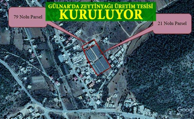 Gülnar'ın Zeytini Gülnar'da İşlenecek