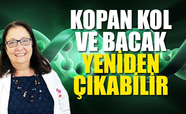 Türk Bilim Kadınının Büyük Başarısı; Kanser İçin Umut Oldu