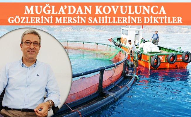 Balık Çiftlikleri Vekillerin Takibinde