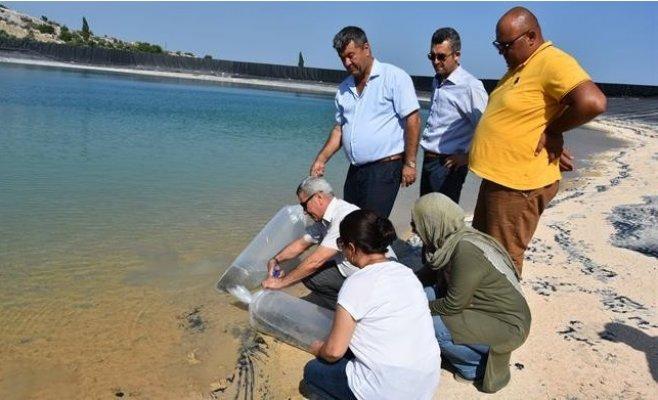 Su Kaynaklarının Balıklandırılması