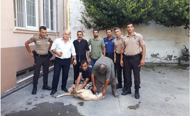 Tarsus Polisinden Örnek Davranış