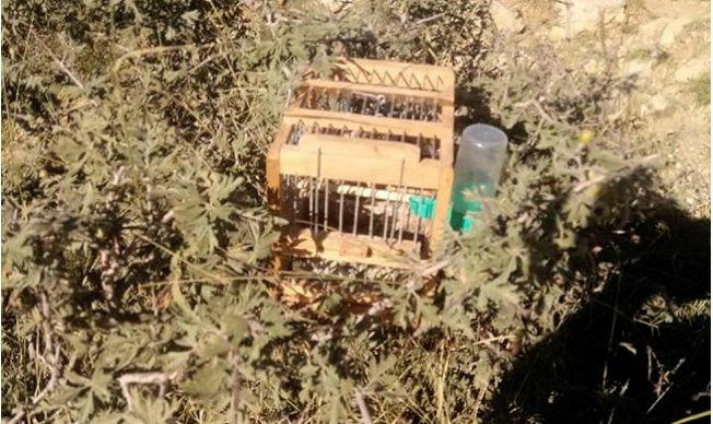 Yasa dışı Kuş Avcılığına Suçüstü