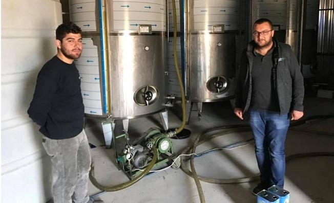 Mut'a Günlük 200 Ton Zeytinyağı Üretiliyor