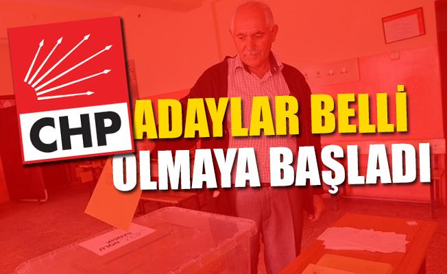 CHP'de Mersin Adayı 4 Ocak'ta Belirlenecek