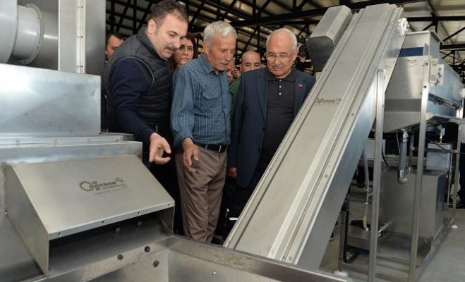 Kocamaz, Zeytin-Yaprak Salamura Tesisi'nin Açılışını Gerçekleştirdi