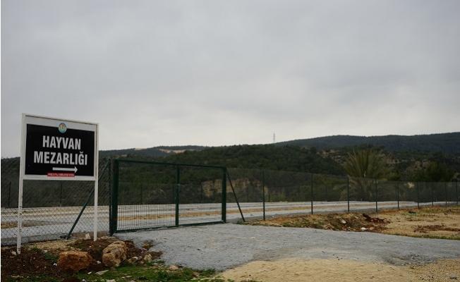 Mezitli Belediyesi'nden Hayvan Mezarlığı