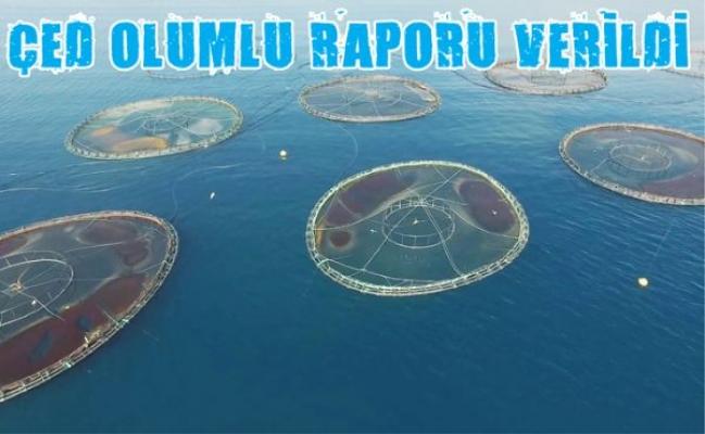 Mersin'de Balık Çiftlikleri İçin ÇED Olumlu Rapor Verdi.
