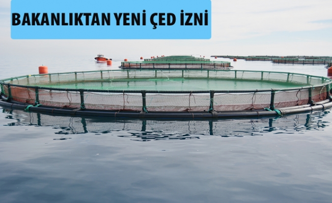 Mersin'e Balık Çiftlikleri Kuruluyor. Kamuoyunda Tık Yok