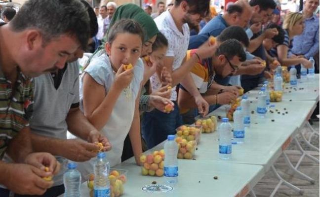 Mut Karacaoğlan Kayısı Festivali 7 Haziran'da