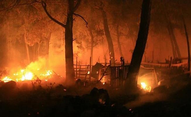 Memleketin Akciğerlerini PKK mı Ateşe Veriyor?