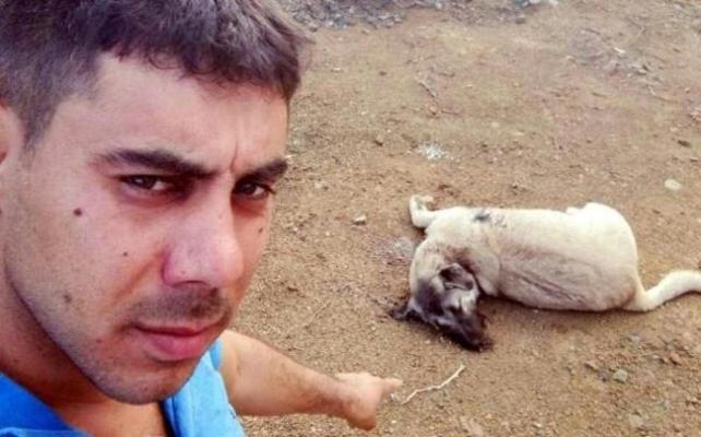 Mersin'de 9 Aylık Köpek Av Tüfeği ile Öldürüldü