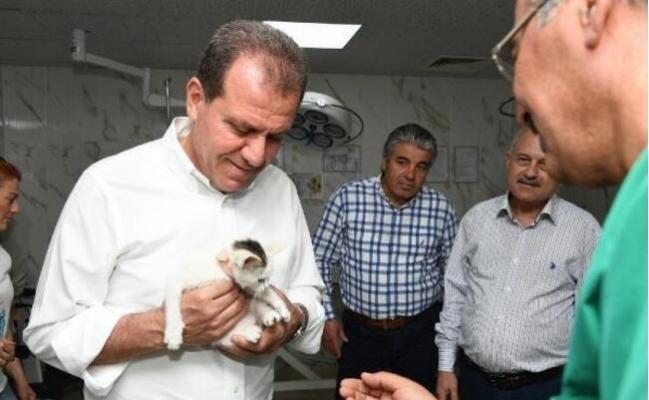 Mersin'de Altı Ayda 723 Kedi ve 1583 Köpeğin Tedavisi Yapıldı