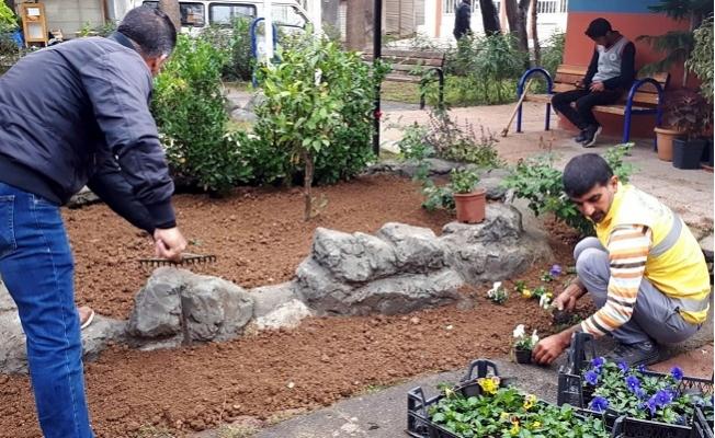 Akdeniz'de Parklar Çiçek Açıyor