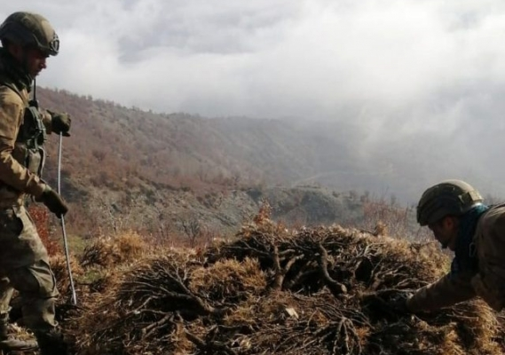 Bitlis ve Siirt'te Kıran-8 Sehi Ormanları Operasyonu