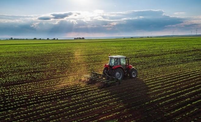 Tarım Sektörü Uzun Vadeli Tarım Politikaları Bekliyor