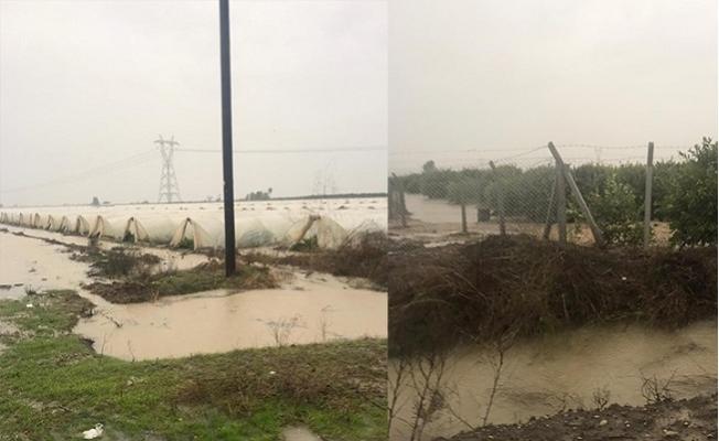 Tarsus'ta Tarım Alanları Sular Altında Kaldı
