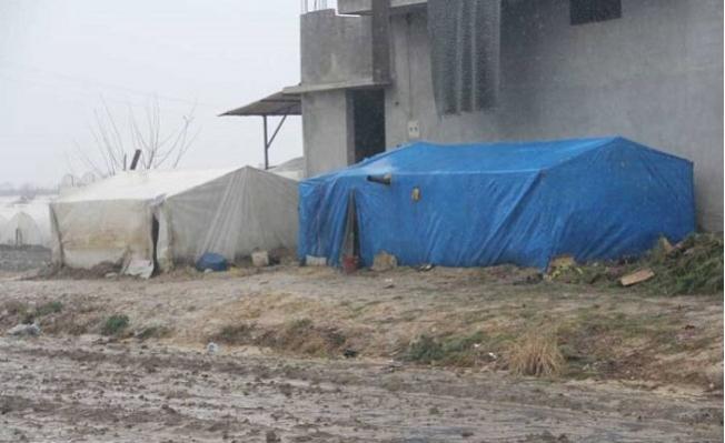 Tarsus'ta Mevsimlik İşçilerin Kaldığı Çadırlar Sula Altında Kaldı
