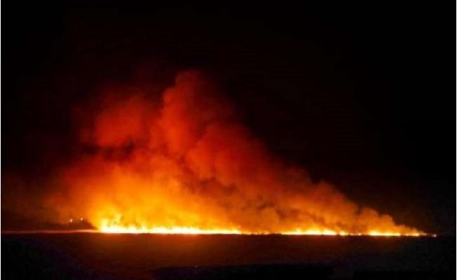 Mersin'de Ramsar Sözleşmesi´yle Korunan Deltada Yangın