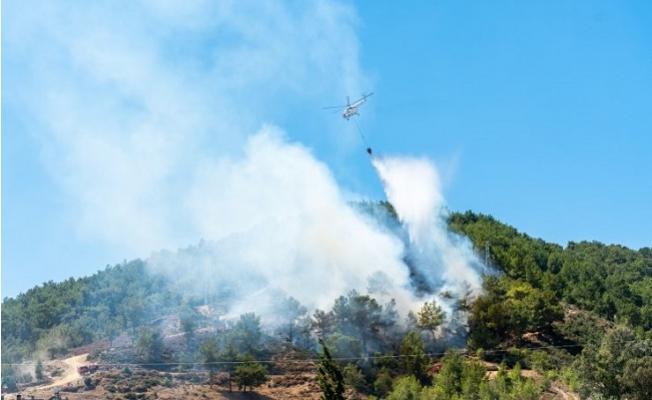 İş Makinesinde Çıkan Yangın Ormana Sıçradı