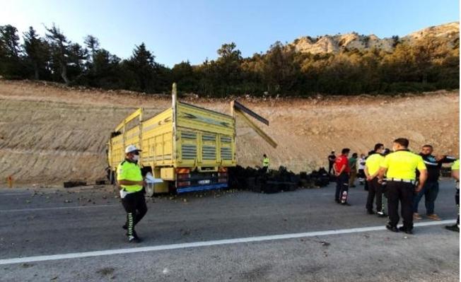 Yol Kenarındaki Toprak Alana Çarpan Kamyonun Sürücü Öldü
