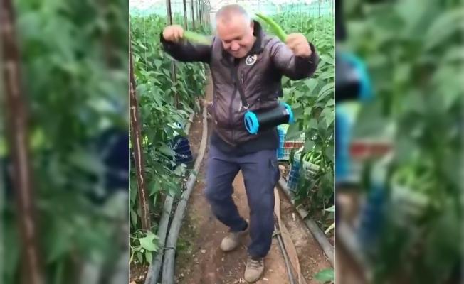 Yeşil Biber Fiyatındaki Artınca Üretici Çiftetelli Oynadı.
