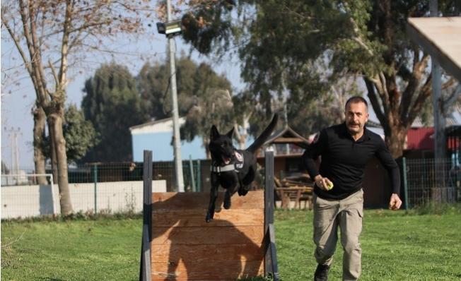 Onlar Mersin'de Zehir Tacirlerinin Korkulu Rüyası