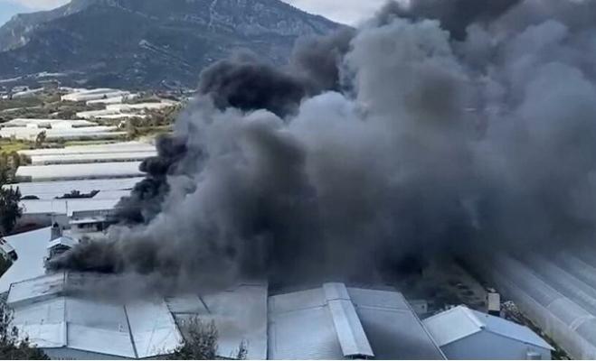 Anamur'da Muz Sarartma Tesisinde Yangın Hasara Neden Oldu.