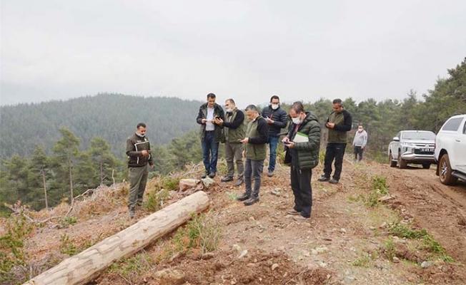 Mersin'de Ormancılık Faaliyetleri İncelendi.