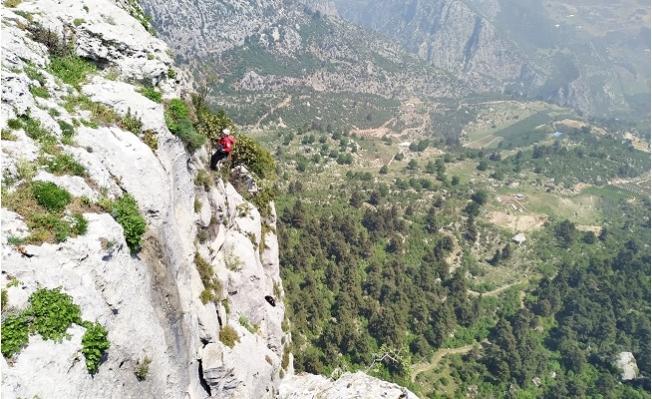 Mersin'de Kayalıklarda Mahsur Kalan Keçiyi AKUT Ekibi Kurtardı