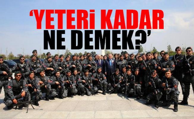 CHP'li Antmen'den 'Erdoğan'ın Koruma Ordusu' Sorusu