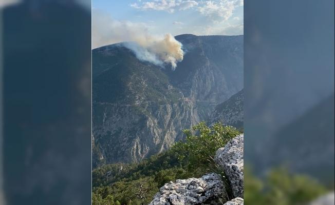 Tarsus'ta Yıldırım Düşen Ormanda Yangın