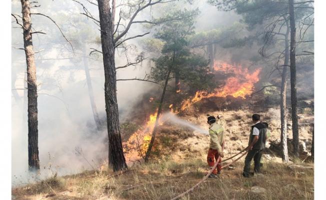 Aydıncık Yangını Sonrası Vatandaşlara Duyarlılık Çağrısı