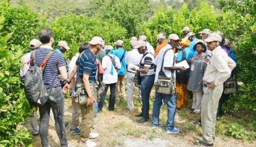Afrikalı Ormancılara Türkiye'deki Ormancılık Faaliyetleri Anlatıldı