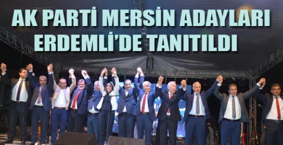 Ak Parti Mersin Adayları Erdemli'de Tanıtıldı.