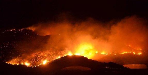 Anamur'da Orman Yangını