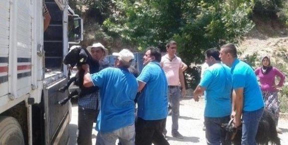 Anamur'daki Orman Yangını Devam Ediyor, Evler Boşaltıldı