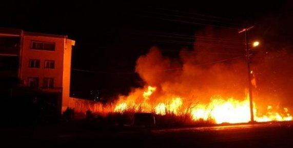 Anamur'daki Yangında 12 Dönüm Sera Zarar Gördü