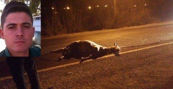 Ata Çarpan Motosikletin Sürücüsü öldü