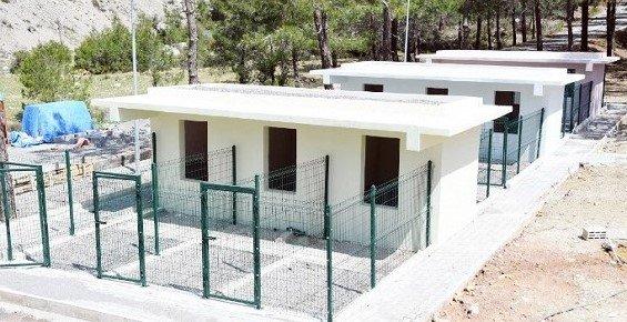 Bozyazı'da Sahipsiz Hayvanlara Otel Konforunda Barınak