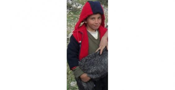 Ağaçtan Düşen Çocuk Hayatını Kaybetti