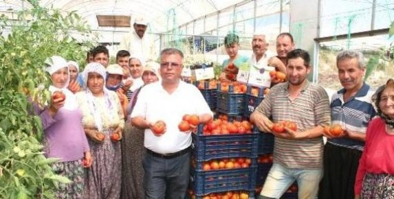 Domates Üreticilerinden Canan Karatay'a Tepki