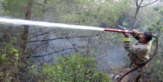 Dünyaca Meşhur Kayacı Vadisi'nde Orman Yangını