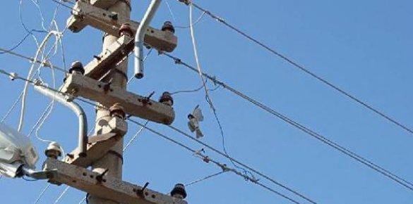 Elektrik Tellerine Takılan Serçeyi İtfaiye Ekipleri Kurtardı