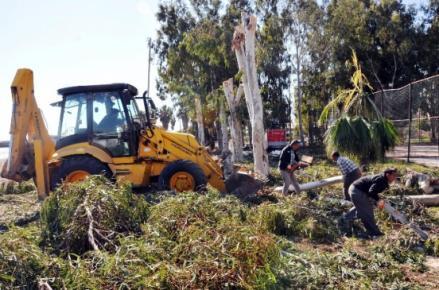Erdemli Belediyesi Park Bahçe Bakımını Sürdürüyor
