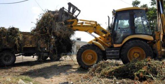 Erdemli Belediyesi'nden Çevre Temizliği
